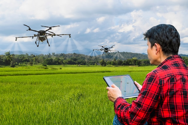 Agricultor inteligente usando drone agrícola de controle de tablet voar para pulverizar fertilizante ou inseticida no conceito de fazenda inteligente de campos de arroz