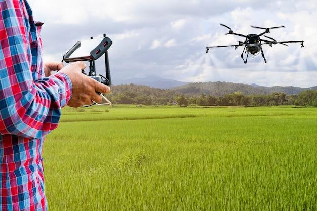 Agricultor inteligente usando drone agrícola de controle de tablet voar para pulverizar fertilizante ou inseticida nos campos de arroz