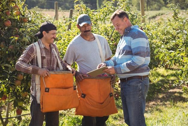 Agricultor, interagindo com os agricultores no pomar de maçãs