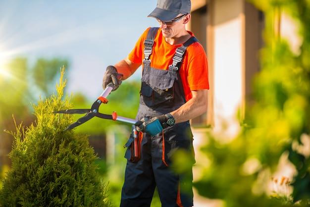 Agricultor jardineiro paisagismo do jardim