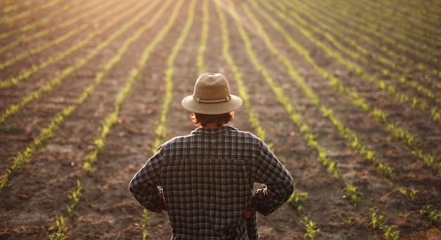 Agricultor masculino em pé no campo agrícola
