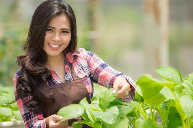 Agricultor na casa verde