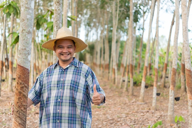 Agricultor na plantação de seringueira
