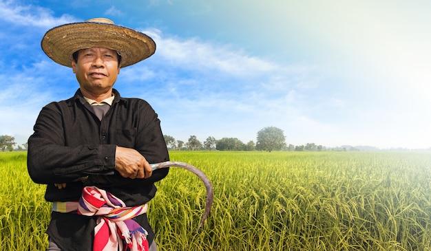 Agricultor no campo de arroz