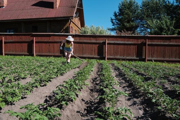 Agricultor que trabalha na agricultura arquivou segurando enxada para remover ervas daninhas e dar forma ao solo e amontoa