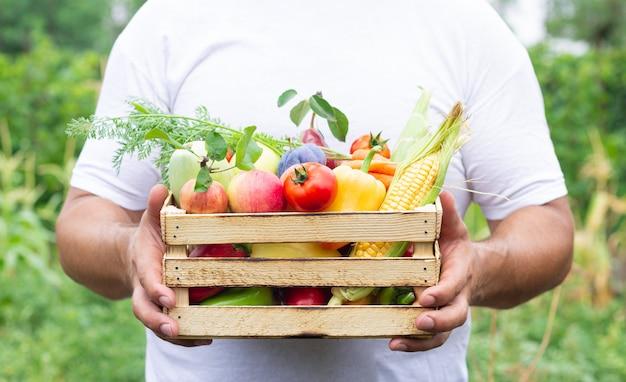 Agricultor segurando uma caixa de madeira cheia de frutas e vegetais orgânicos frescos. conceito de comida ecológica