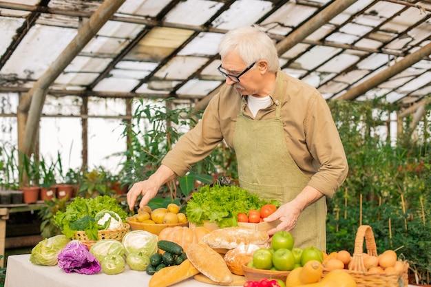Agricultor sênior de cabelo branco e avental, arrumando os legumes no balcão enquanto os prepara para venda no mercado do agricultor