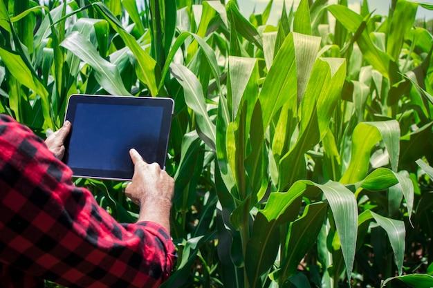 Agricultor usando computador tablet digital