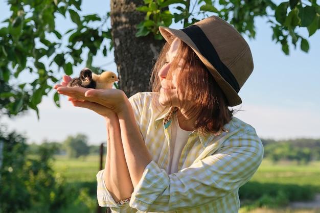 Agricultora ao ar livre, mulher madura segurando nas mãos dois pequenos pintinhos recém-nascidos, estilo rústico country, hora dourada