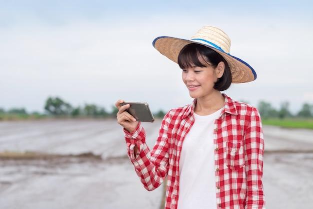 Agricultora asiática usando um smartphone em uma fazenda de arroz