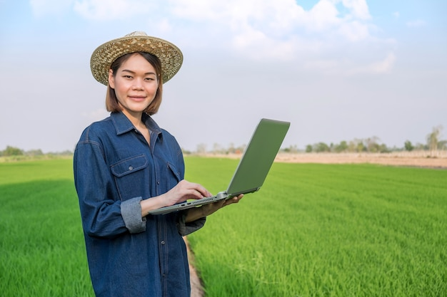 Agricultora asiática vestindo jeans em pé e usando um computador laptop em um campo verde