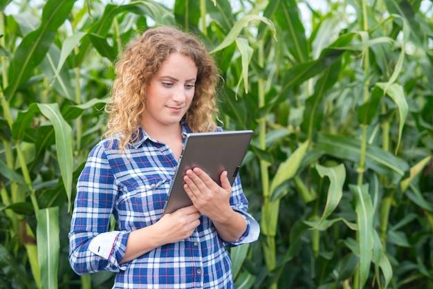 Agricultora com tablet em pé no campo de milho, usando a internet e enviando um relatório