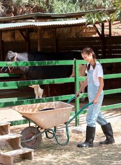 Agricultora cuidando de uma vaca