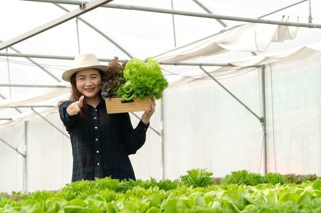 Agricultoras asiáticas colhem vegetais frescos para salada em fazendas do sistema de planta hidropônica na estufa para comercializar. conceito de legumes frescos e alimentos saudáveis. negócios e indústria agrícola.
