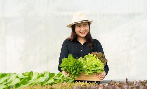 Agricultoras asiáticas colhem vegetais frescos para salada em fazendas do sistema de plantas hidropônicas