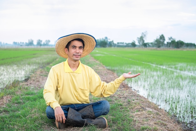 Agricultores asiáticos usam camisas amarelas sentados e levantam as mãos na fazenda verde. imagem para apresentação. Foto Premium