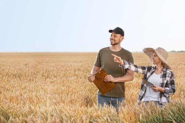 Agricultores no campo em dia ensolarado