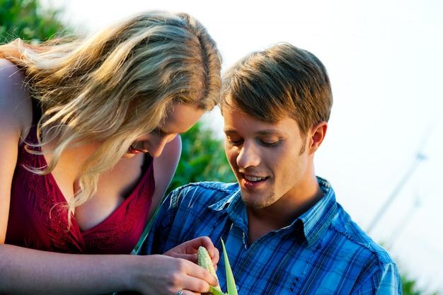 Agricultores que verificam a colheita do milho