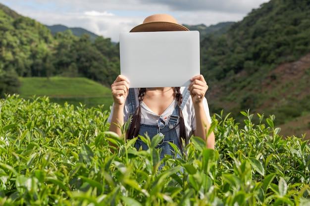 Agricultores segurando uma placa branca na plantação de chá