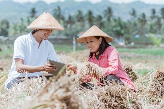 Agricultores usando capas sentam-se nos campos usando comprimidos após a colheita com bons resultados