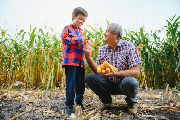 Agricultura familiar. avô de fazendeiros com neto em um campo de milho. um avô experiente explica ao neto a natureza do crescimento das plantas.