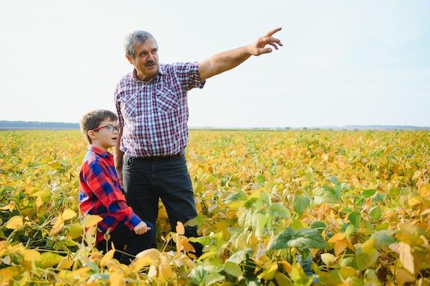 Agricultura familiar. avô de fazendeiros com neto no campo de soja. o avô ensina negócios da família ao neto.