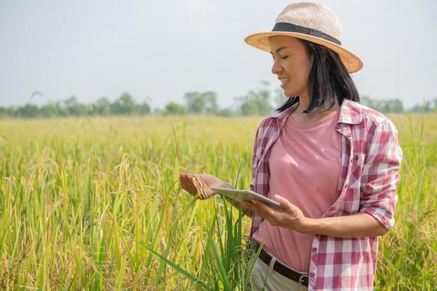 Agricultura inteligente usando tecnologias modernas na agricultura. agricultor agrônomo feminino jovem asiático com computador tablet digital no campo de arroz usando aplicativos e internet, o agricultor cuidar de seu arroz.