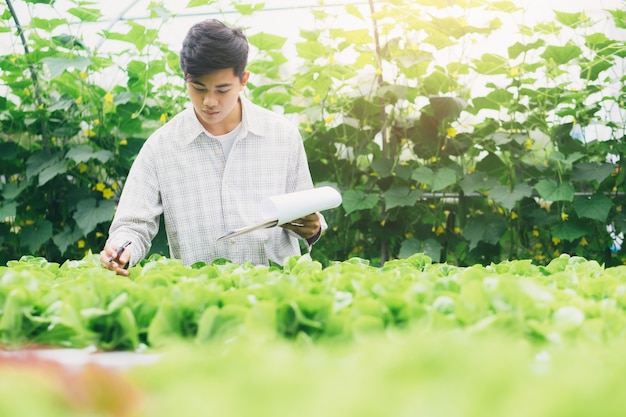 Agricultura inteligente usando tecnologias modernas na agricultura.