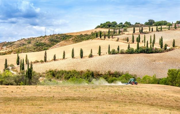 Agricultura, ploughing, trator, com, um, cultivador, arado, a, campo, após, a, colheita