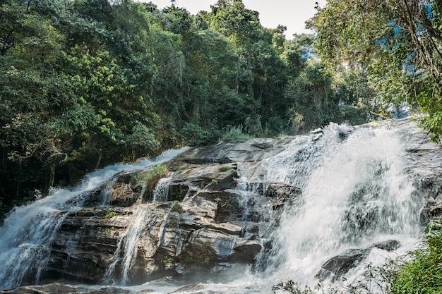 Água caindo entre as rochas de uma cachoeira à sombra das árvores da selva