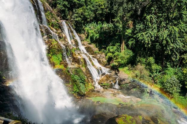 Água caindo sobre as rochas de uma cachoeira no meio da selva