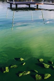 Água com flores de algas, rochas e reflexo do cais de madeira