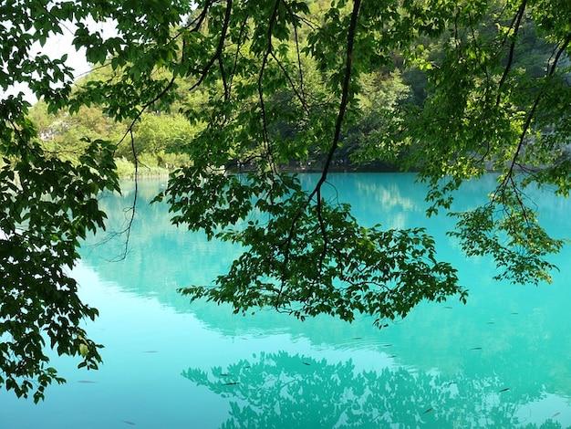 Água croatia lagos plitvice