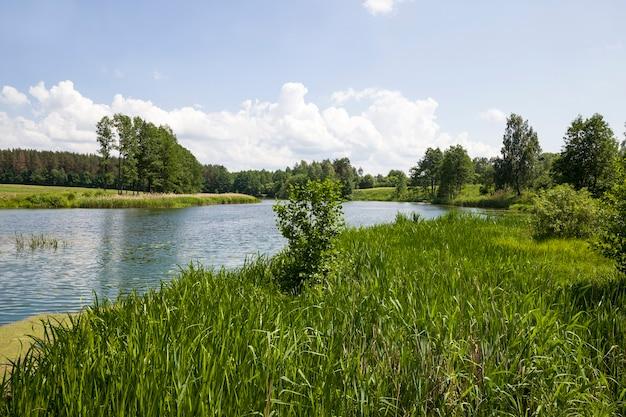 Água em um lago
