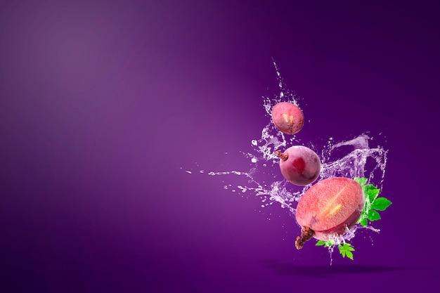Água espirrando em uvas vermelhas frescas sobre roxo