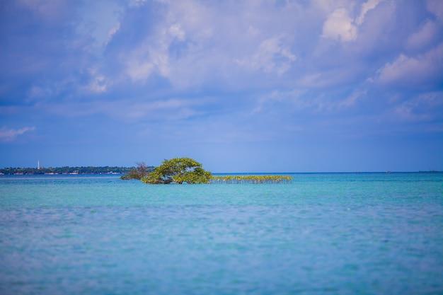 Água incrivelmente limpa no mar perto da ilha tropical
