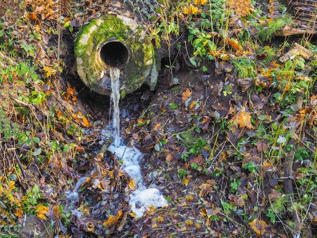 Água pura flui de uma fonte na natureza.