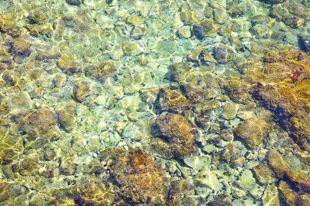 Água transparente tansparente e fundo do mar adriático