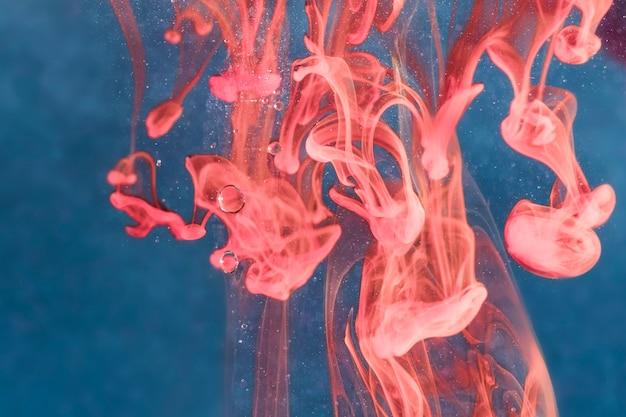Água-viva de cabeça para baixo debaixo d'água