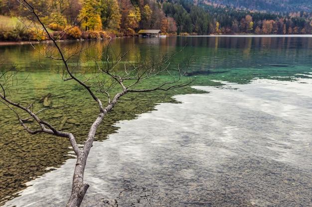 Águas claras do lago alpsee da baviera e cores de outono da floresta