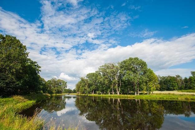 Ainda lago bonito com as árvores no horizonte e as nuvens inchado brancas no céu. dia de verão tranquilo na casa de campo. grandes árvores verdes em um lago
