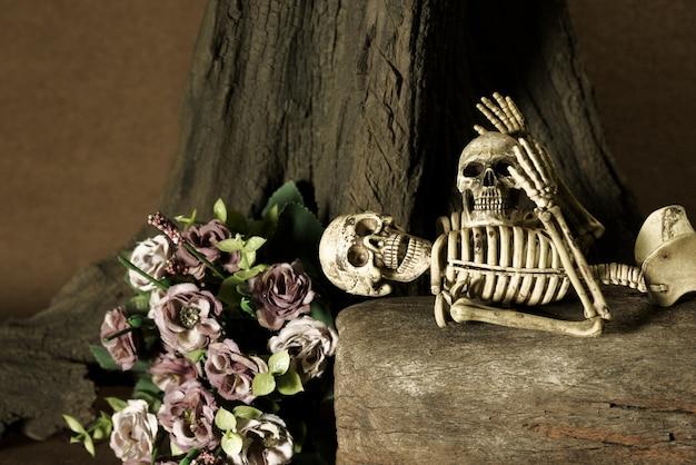 Ainda vida com crânio, conjunto de história de amor
