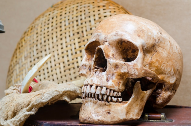 Ainda vida com crânio humano e lanterna