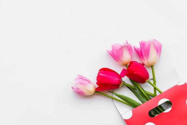 Ainda vida com flor no envelope em fundo branco