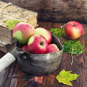 Ainda vida com maçãs de outono