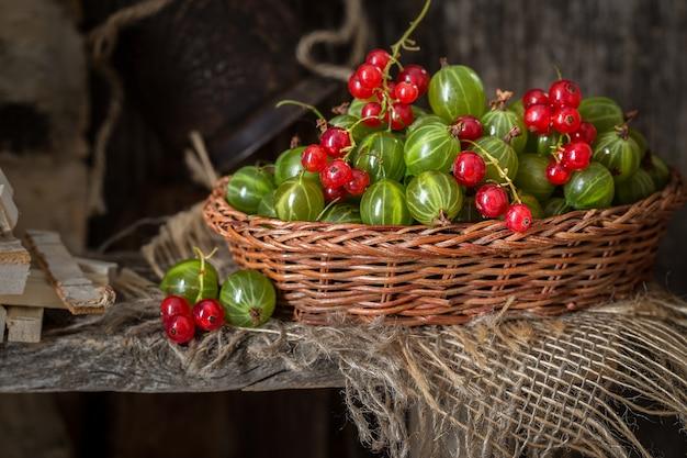 Ainda vida com um balde de frutas diferentes, closeup