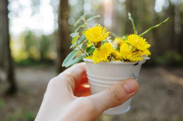 Ainda vida de um pequeno balde de flores e verdes na mão de uma mulher
