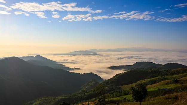 Ajardine a vista na névoa do mar do tempo da manhã no marco bonito da montanha