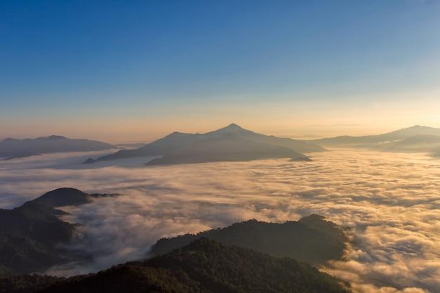 Ajardine com a névoa na montanha de pha tung no tempo do nascer do sol, chiang rai, tailândia.