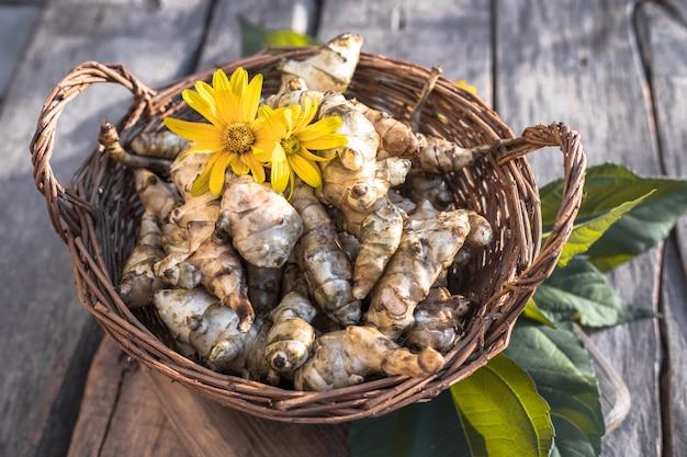 Alcachofra de jerusalém crua. raiz vegetal topinambur na mesa de madeira.